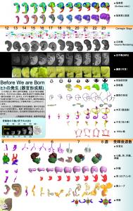 スクリーンショット 2015-07-12 10.09.30
